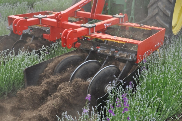 Disc harrow for lavender
